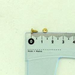 Шуруп золото 6*2,5*4 мм